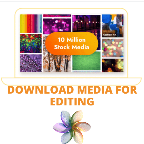 download media for editing