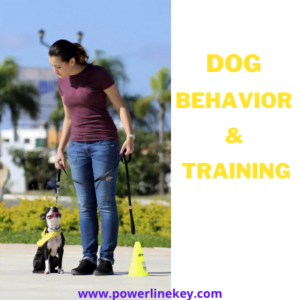 Earn money with dog training centre || Dog Behavior & Training || Dog training courses ||