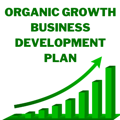 Organic growth Business development plan for startup    Business strategy   